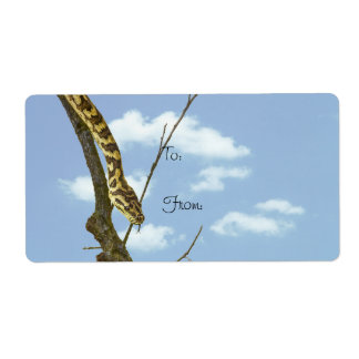 Garter Snake on a Limb against a Blue Sky Personalized Shipping Label