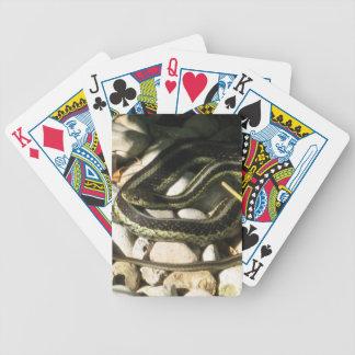 Garter Snake on Rocks Bicycle Playing Cards
