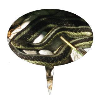 Garter Snake on Rocks Cake Topper