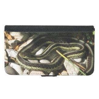 Garter Snake on Rocks