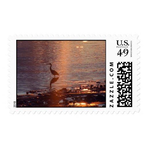 Garza 42 de la puesta del sol timbres postales