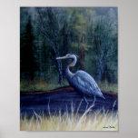 Garza azul de Suzie Thaller Impresiones