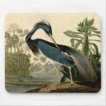 Garza de Audubon Luisiana Alfombrillas De Ratón