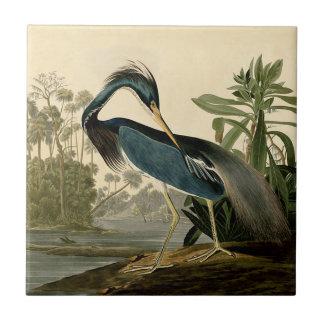 Garza de Audubon Luisiana Azulejo Cuadrado Pequeño