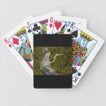 garza de gran azul cartas de juego
