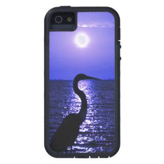 Garza de gran azul en el claro de luna iPhone 5 carcasas