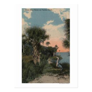 Garza de gran azul en la playa de la costa de la tarjetas postales