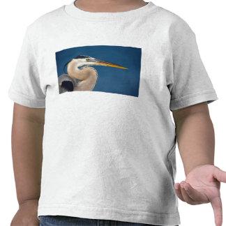 Garza de gran azul (herodias del Ardea). Los Camiseta