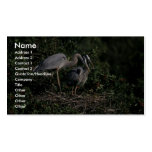Garza de gran azul plantilla de tarjeta personal