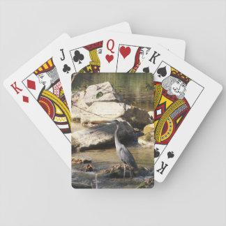 Garza de gran azul que se coloca en foto de la cal barajas de cartas