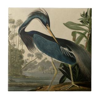 Garza de Luisiana Azulejo Cuadrado Pequeño