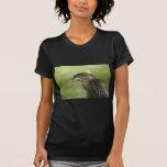 Garza de noche coronada negro juvenil camisetas
