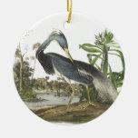 Garza de Tricolored, Juan Audubon Adornos