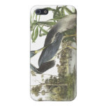 Garza de Tricolored, Juan Audubon iPhone 5 Protector