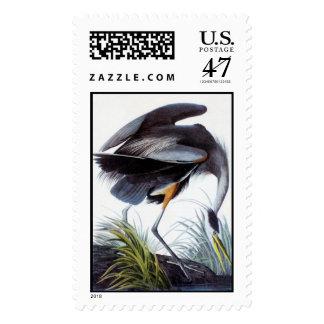 Garza del gran azul de Audubon Timbre Postal