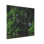 Garza e impresión perezosa de la lona del río impresion en lona