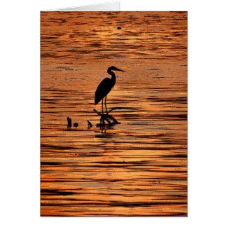 Garza en la tarjeta de la puesta del sol