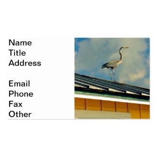Garza en un tejado tarjetas de visita
