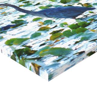 Garza entre el Waterlilies Impresion De Lienzo