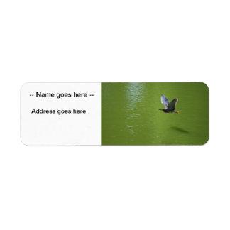 Garza verde en Mid Air Etiqueta De Remite