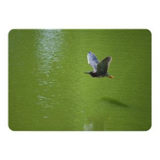 Garza verde en Mid Air Invitación 12,7 X 17,8 Cm