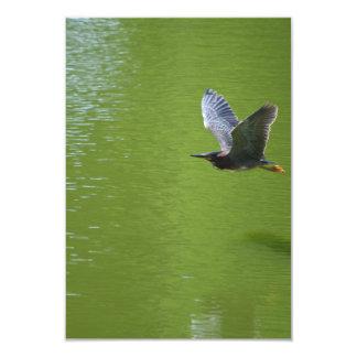 Garza verde en Mid Air Invitación 8,9 X 12,7 Cm