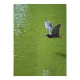 Garza verde en Mid Air Invitación 13,9 X 19,0 Cm