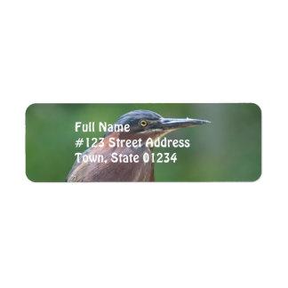 Garza verde etiqueta de remitente