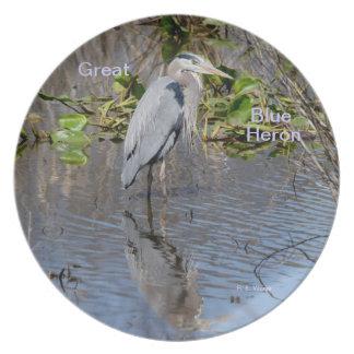 Garza y reflexión del gran azul de la placa plato de comida