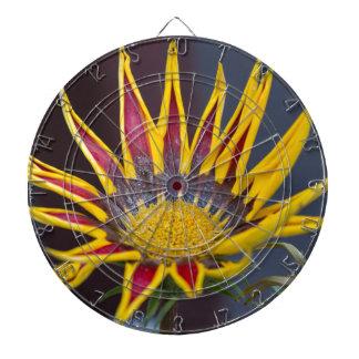 garzania gardenia flower in the garden dartboard with darts