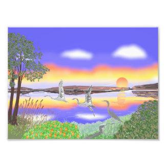 Garzas en la puesta del sol, escena contemporánea  impresiones fotográficas