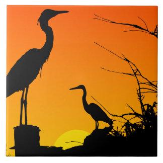 Garzas en la teja de la puesta del sol