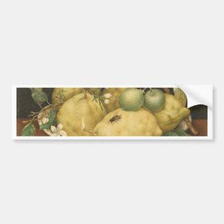 Garzoni - Still Life with Bowl of Citrons 1640s.jp Bumper Sticker
