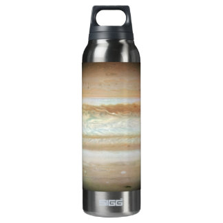 Gas Ring Around Supernova 16 Oz Insulated SIGG Thermos Water Bottle