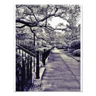 Gaston Street Photo Print