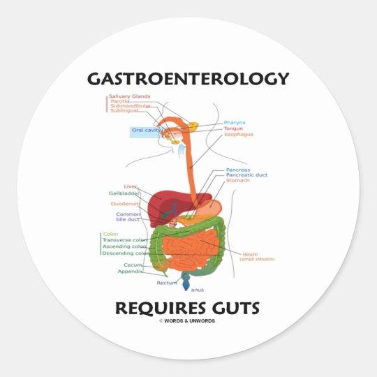 Gastroenterology Requires Guts (Digestive System) Classic Round Sticker