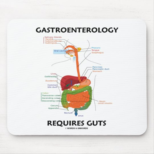Gastroenterology Requires Guts (Digestive System) Mouse Pad