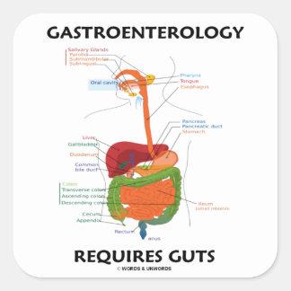 Gastroenterology Requires Guts (Digestive System) Square Sticker