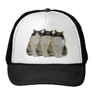 Gata Enmascarada Hat