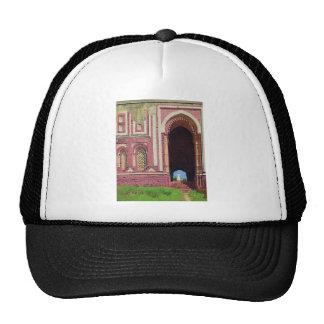Gate near the Qutub Minar. Old Delhi by Vasily Trucker Hat