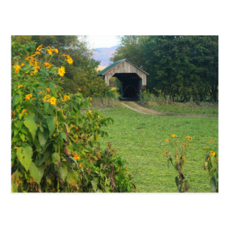 Gates Farm Covered Bridge Sunflowers Cambridge VT Postcard