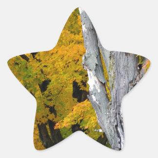 Gateway to Fall Star Sticker
