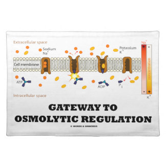 Gateway To Osmolytic Regulation (Active Transport) Placemat