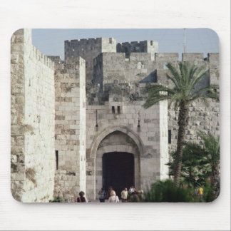 Gateway to the Old City Mouse Pad