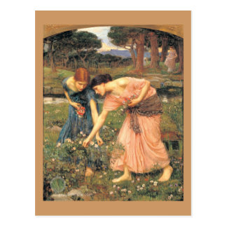 Gather  Roses While Ye May - Women Picking Flowers Postcard