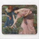 Gather Ye Rosebuds While Ye May Mouse Pad