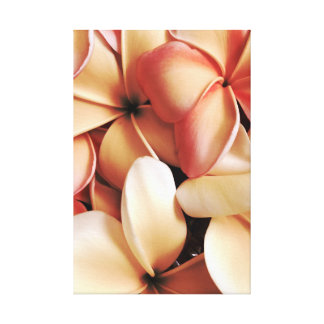 Gathered Hawaiian Plumeria Lei Flowers Canvas Print