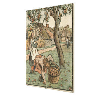 Gathering Apples, from 'Travaux des Champs', engra Canvas Print