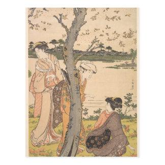 Gathering Flowers in Garden - Katsukawa Shunchō Postcard