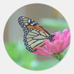 Gathering Nectar Round Sticker